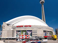 Hadrian | Powder Coated - Rogers Centre | Relcross